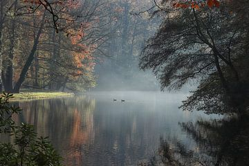Herbstmorgen von Bob Bleeker