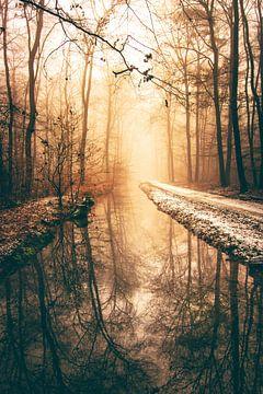 Zonsopgang met mist in winterbos van Jan Wehnert