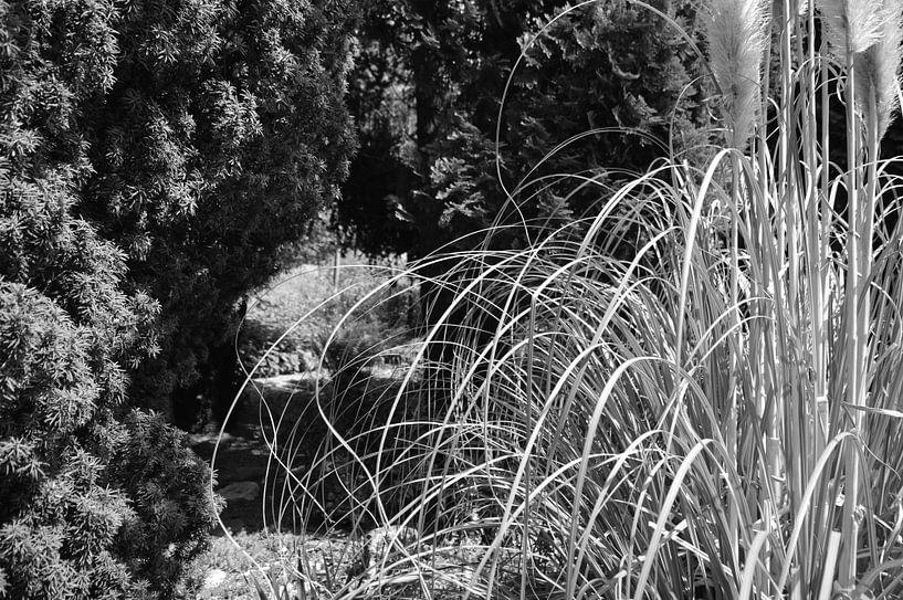 Botanisch 2 van True Color Stories
