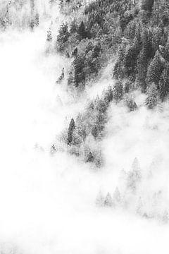 Schwimmender Schnee von Jesse Barendregt