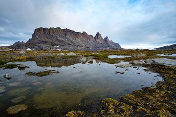Bear Island van Rudy De Maeyer