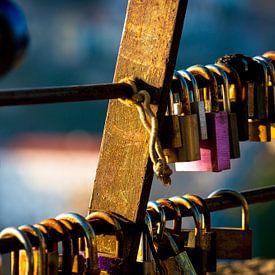Lovelocks In Deep Colour van Urban Photo Lab