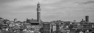 Monochrome Tuscany in 6x17 format, Siena van Teun Ruijters