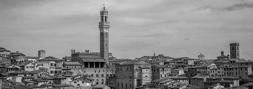 Monochrome Tuscany in 6x17 format, Siena