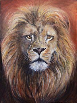 le Roi Lion.... Roi des animaux.... sur Els Fonteine