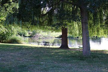 Zitje onder de boom aan het water