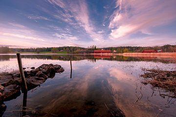 Smålands nature van Marc Hollenberg