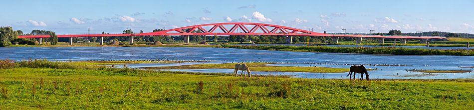 Panorama Hanzeboog spoorbrug Zwolle van Anton de Zeeuw