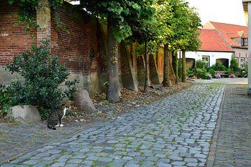 Een straat in Harderwijk van Gerard de Zwaan