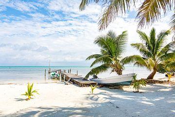 Gestrande boot op een tropisch caribisch strand - Belize van Michiel Ton