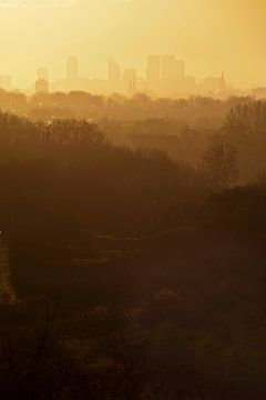 Skyline Den Haag sur Michel Mees