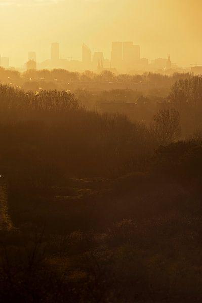 Skyline Den Haag van Michel Mees