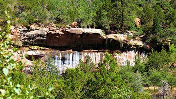 Zion National Park van Marek Bednarek