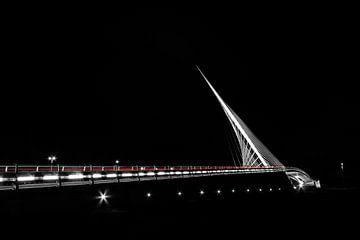 Citer by  Calatrava van Barend Koper