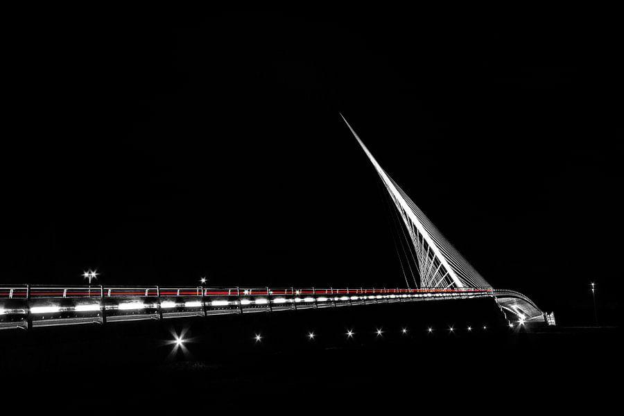 Citer by  Calatrava