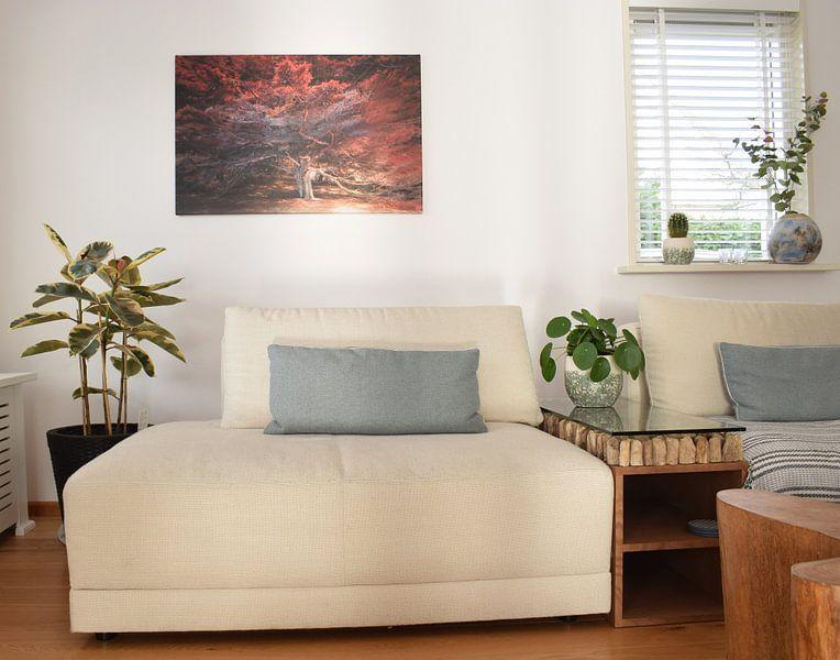 Kundenfoto: Malerische Zypressenlandschaft von Rob Visser, auf leinwand