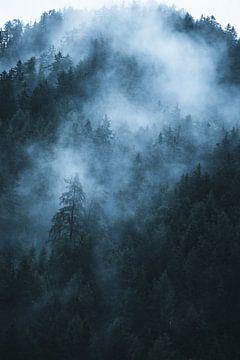 Landschaft mit Bäumen im Nebel von Dylan Shu