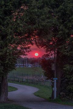 Rode zonsondergang van Moetwil en van Dijk - Fotografie