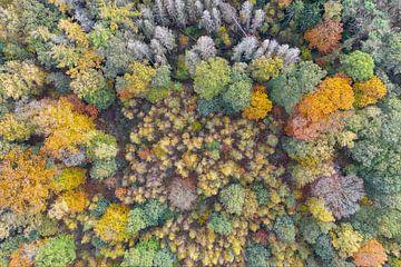 Herbstfarben von oben von Jeroen Kleiberg