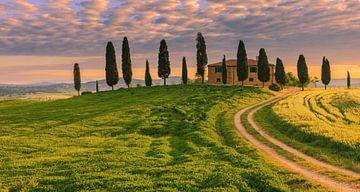 Podere I Cipressini, Toskana, Italien von Henk Meijer Photography