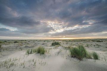 Zandduinen op Ameland van