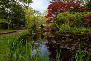 Japanse tuin in bloei van Michiel Mos