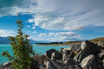 Lake Pukaki New Zealand van