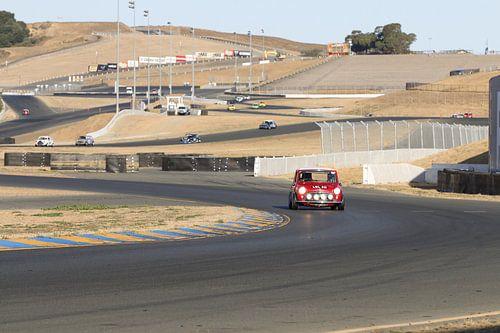 mini cooper racing van Roald Rakers