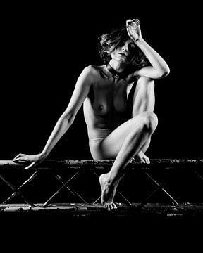 Bild einer sehr schönen nackten Frau. #A9705 von william langeveld