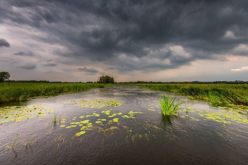 Nationaal Park de Weerribben-Wieden van Jenco van Zalk