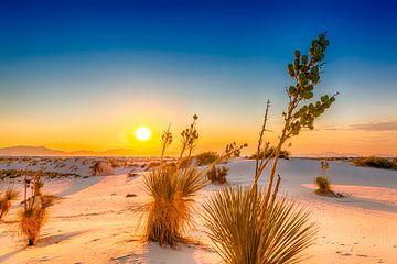 Sonnenuntergang über dem White Sands National Monument von Melanie Viola
