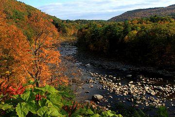 Deerfield river von lieve maréchal