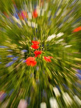 Bloemenexplosie 2 van Rien de Hoop