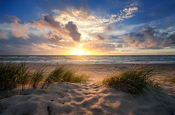 Baltic Beach van Steffen Gierok