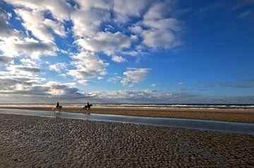 Paarden op het strand von Erik Reijnders