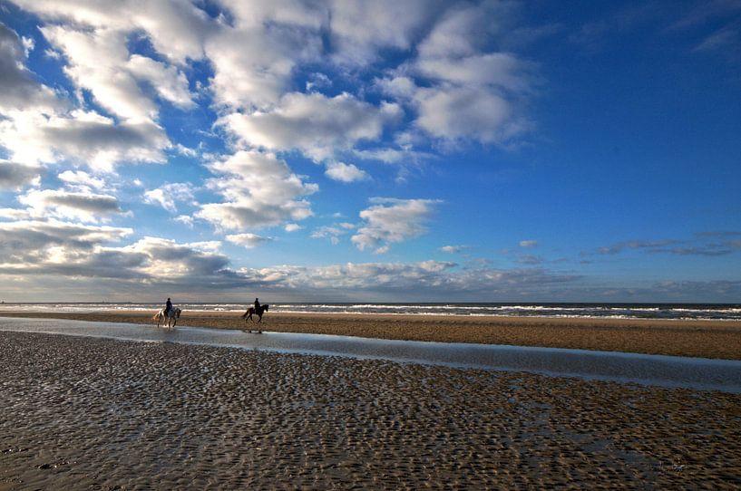 Paarden op het strand van Erik Reijnders