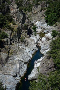 Een persoon zwemmend in een rivier van Lynn Stokkers