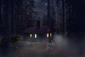 Verdwaald meisje in het bos met wolf van Danny van Vessem