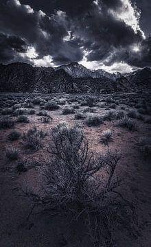 Wenn die Dunkelheit aufgeht von Joris Pannemans - Loris Photography