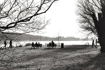 Park in Holland Schwarz Weiß von Consala van  der Griend