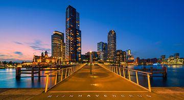 Rotterdam skyline van Henk Meijer Photography