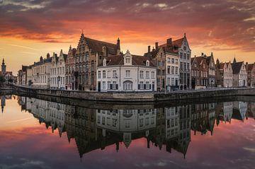 Vlammende reflectie van Joris Pannemans - Loris Photography
