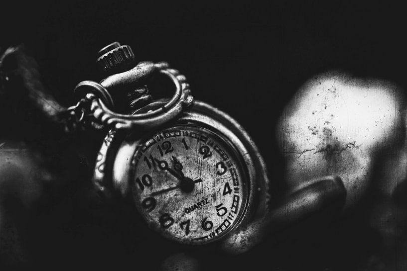 Time is Precious 3 van Kirsten Scholten