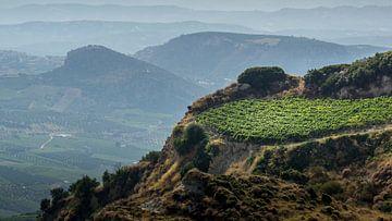 Weinstraße Kreta von natascha verbij