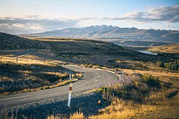 Slingerweg in Nieuw-Zeeland van Leon Weggelaar