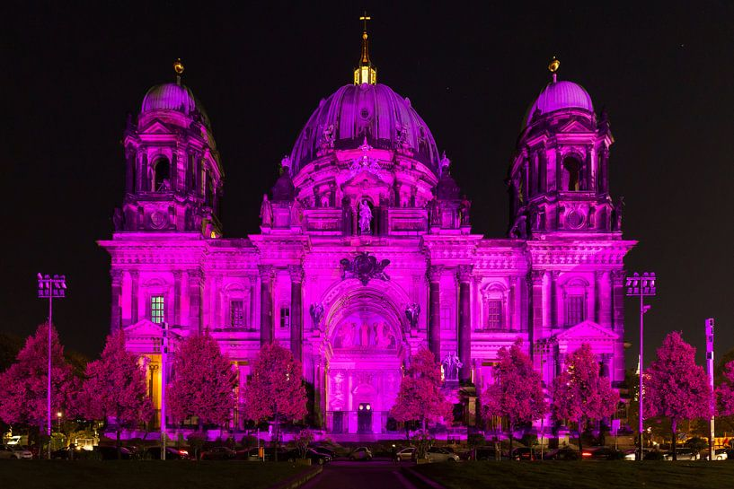 Berlijnse Dom in een bijzonder licht van Frank Herrmann