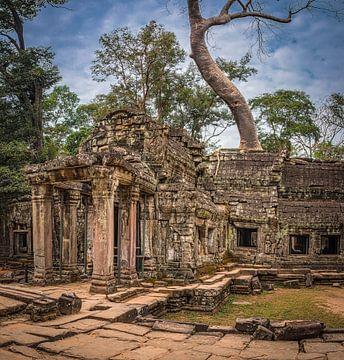 Ta Prohm tempel, Cambodja van Rietje Bulthuis