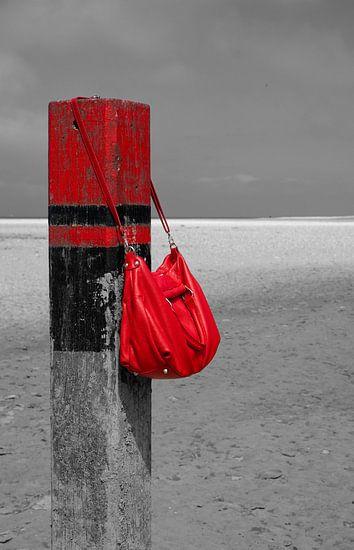 Rode Tas van Menno Schaefer