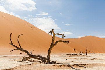 Verlaten landschap Deadvlei Namibië von Simone Janssen