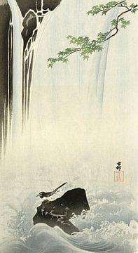 Japanse kwikstaart bij waterval van Ohara Koson